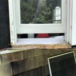 Trim Rot Before