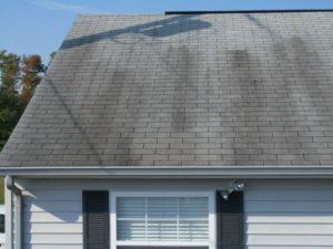 Black Streaks on Roof
